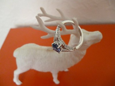 Reindeer Proposal