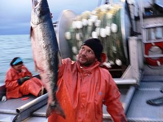 Bristol Bay salmon fishery