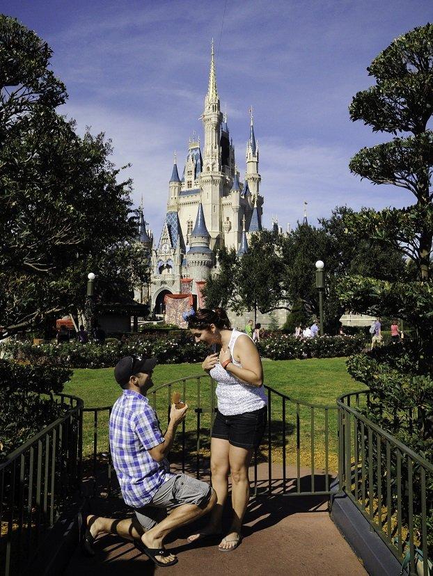 Disney Proposal