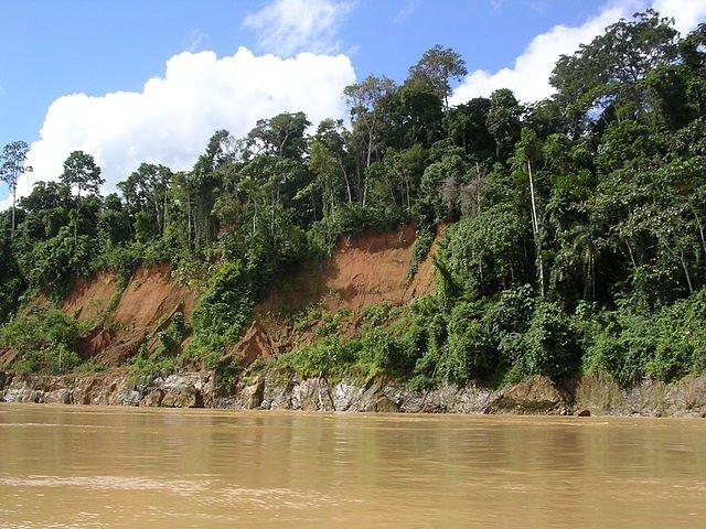 Madre de Dios, Peruvian Amazon