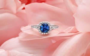 Blue Sapphire Harmony on Pink_ZVretouch