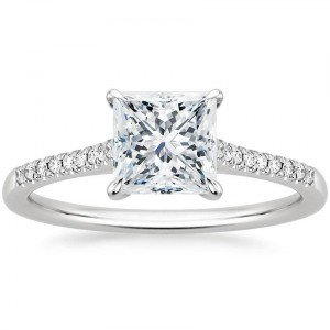 lissome princess cut