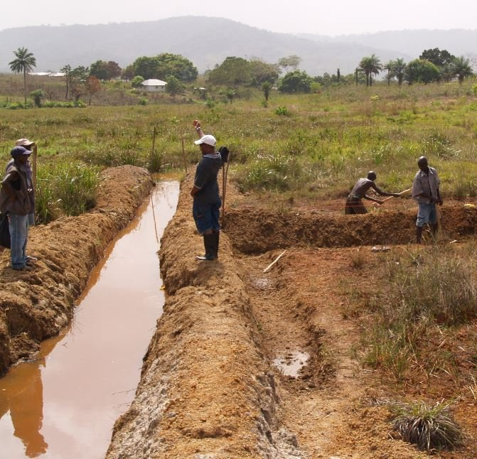 Don't Suspend the Conflict Minerals Rule