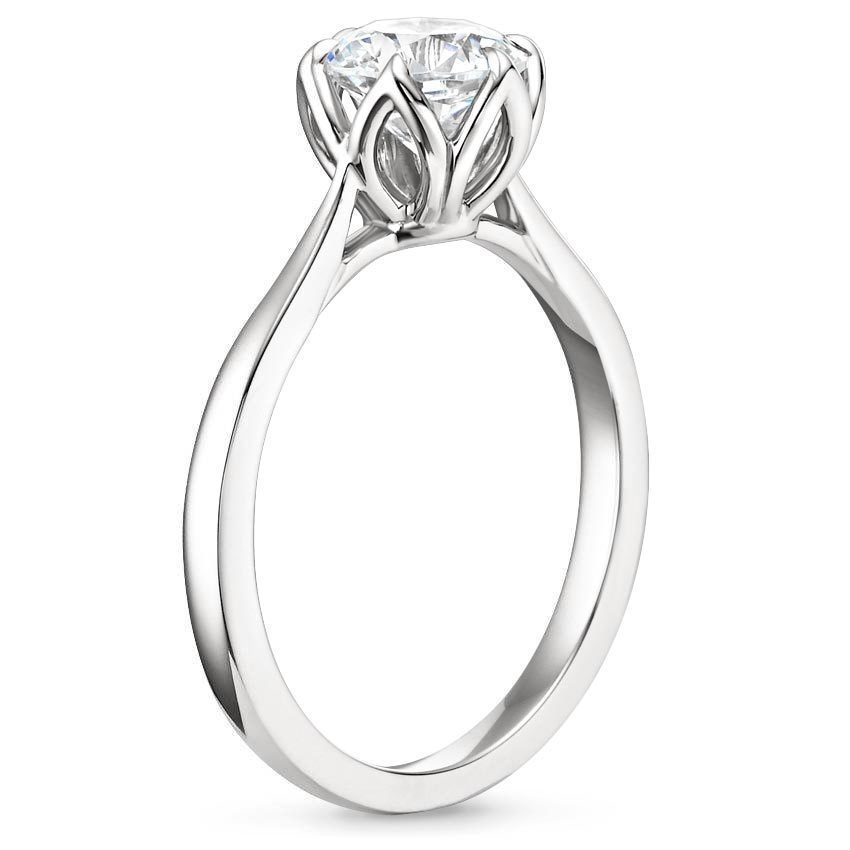 7 Striking Solitaire Engagement Rings Brilliant Earth