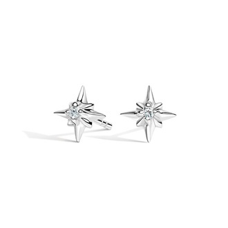 North Star Diamond Earrings Image