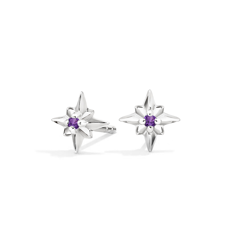 Amethyst Nature Inspired Studs