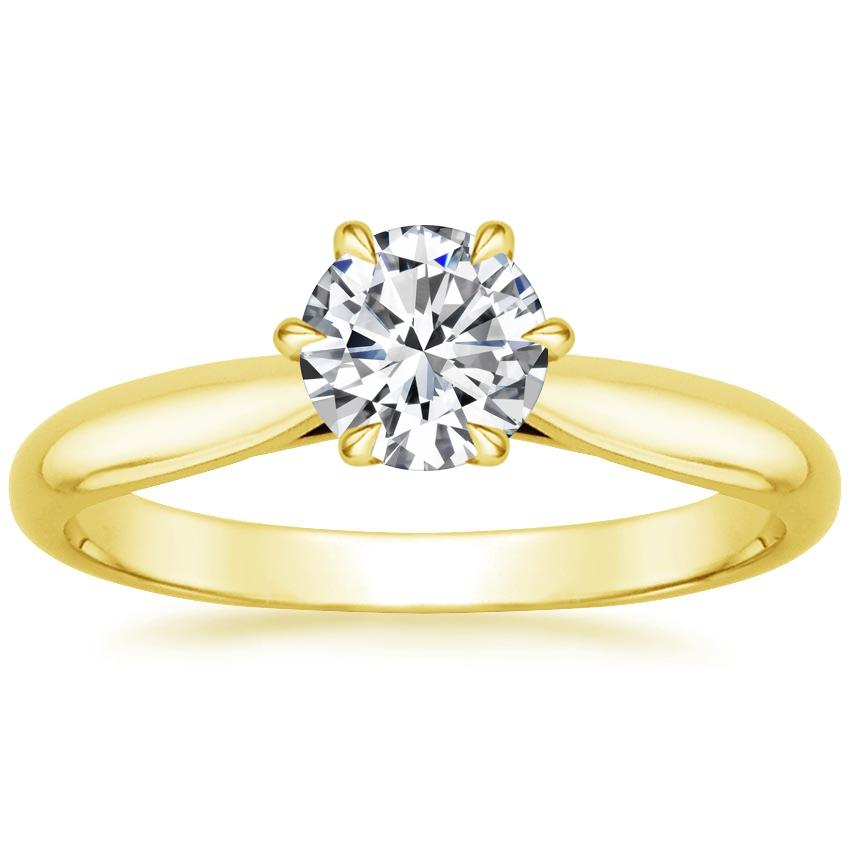 Yellow Gold Catalina Ring