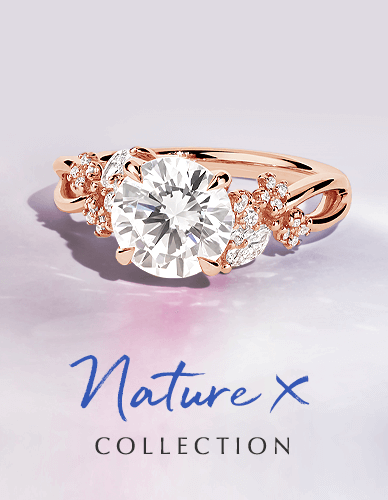 Nature X Collection